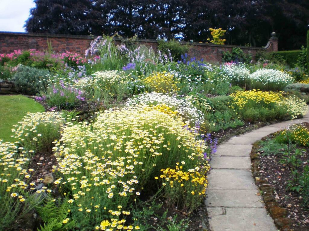 A full herbaceous garden bed