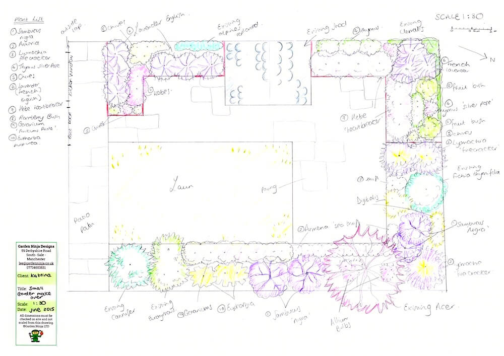 A garden design drawn by hand for a small garden