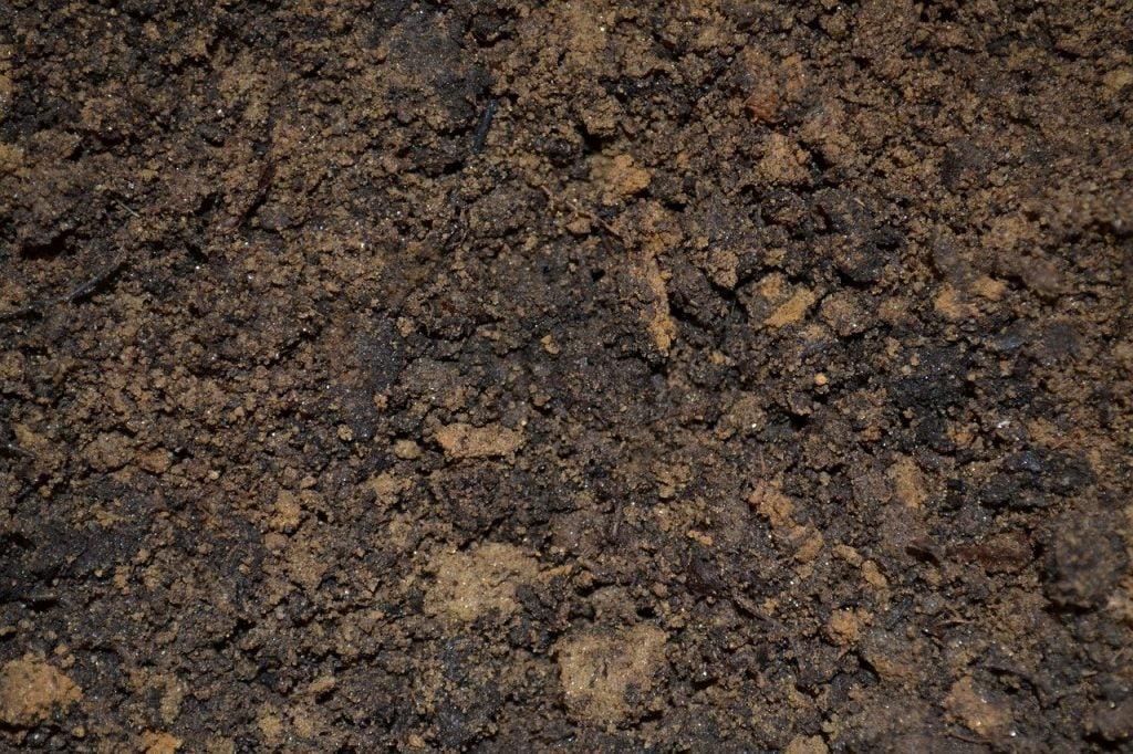 Sand based soil