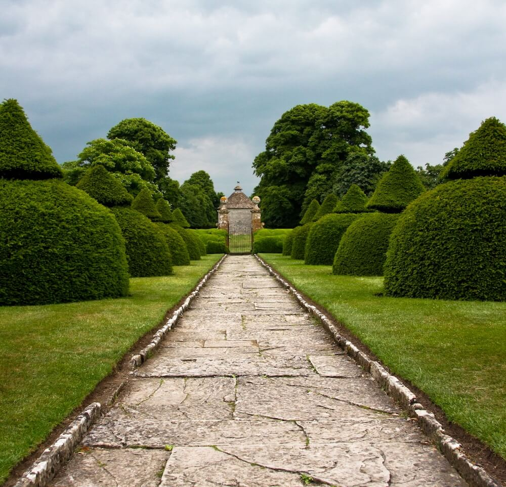 A formal path with clipped yew
