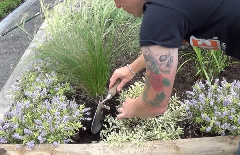 Garden Blogger Lee Burkhill mulching a garden