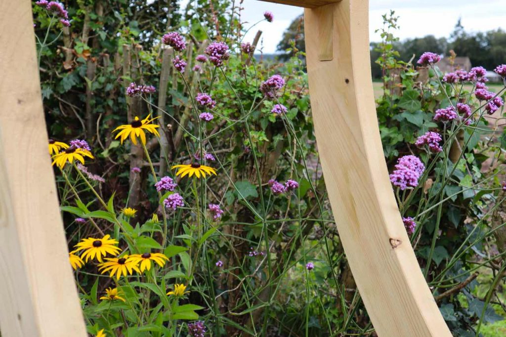 Rudbeckia and Verbena next to a moon gate