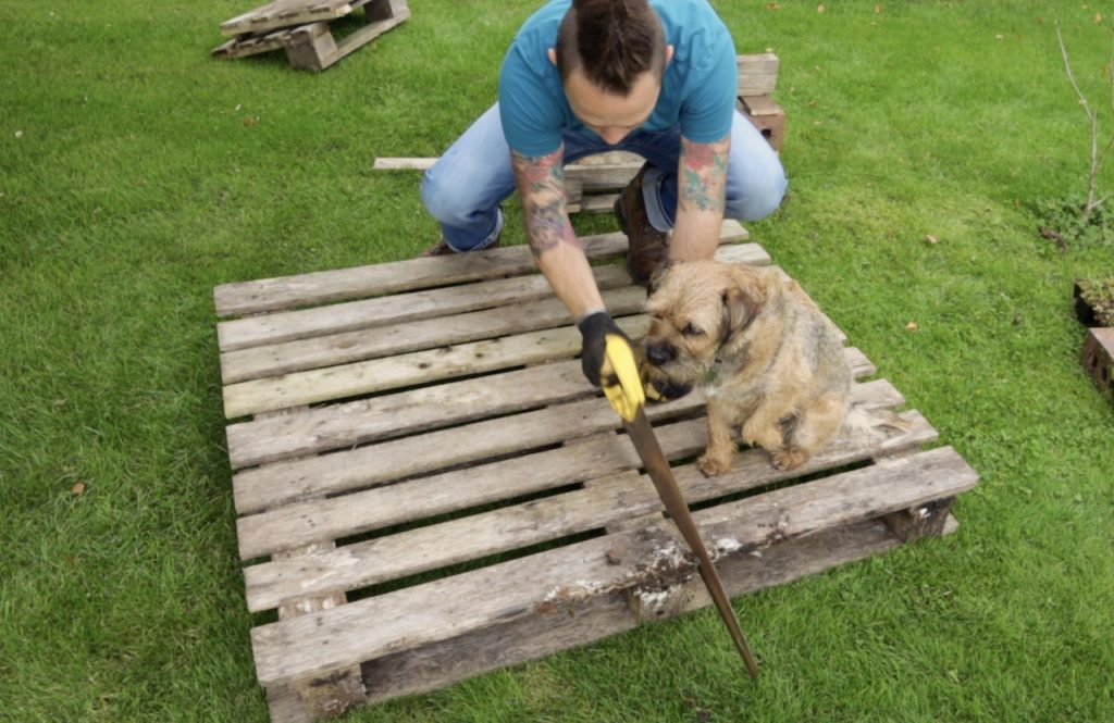 Cutting down a wooden pallet for a insect hotel