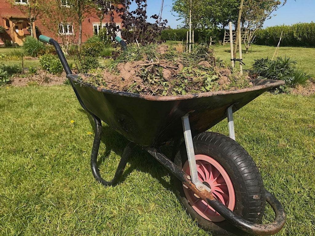 A wheel barrow full of weeds