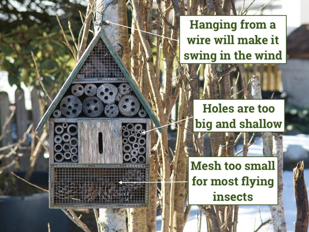 A shop bought bug hotel and its problems