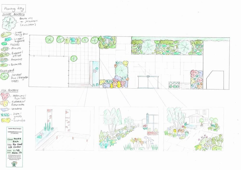 A hand drawn design for a dog friendly garden