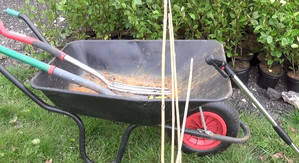 A wheelbarrow full of canes and a spade