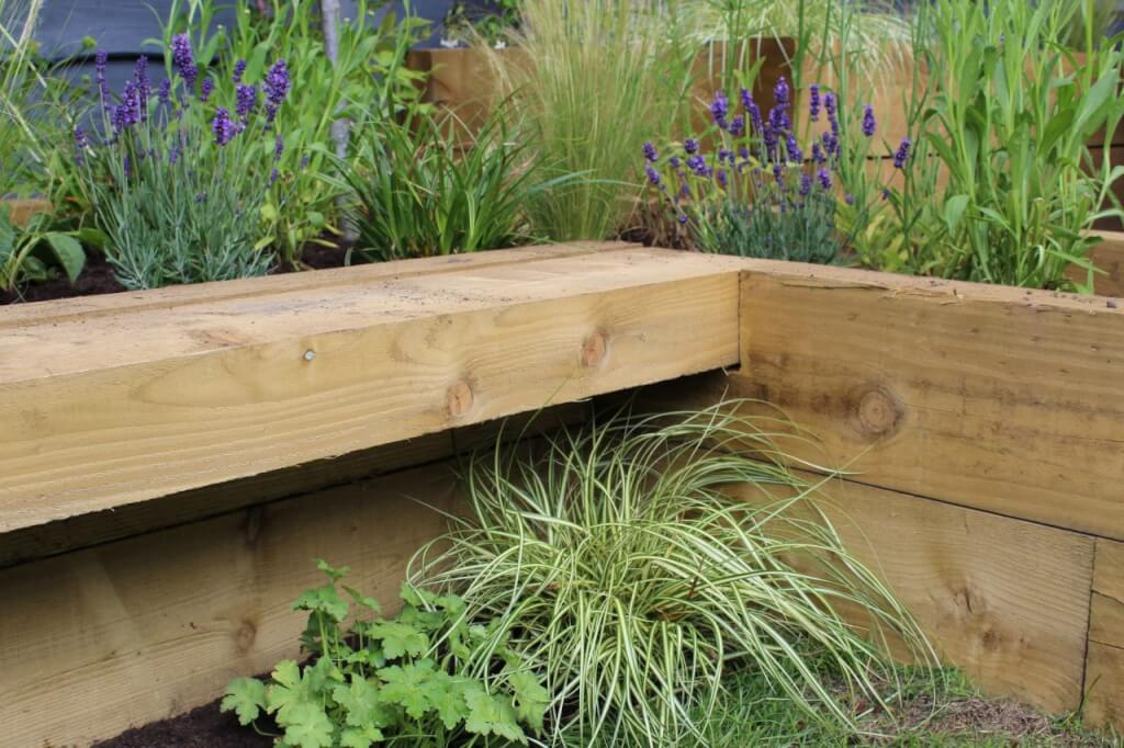 Raised bed in a garden with plants all around it from garden ninja