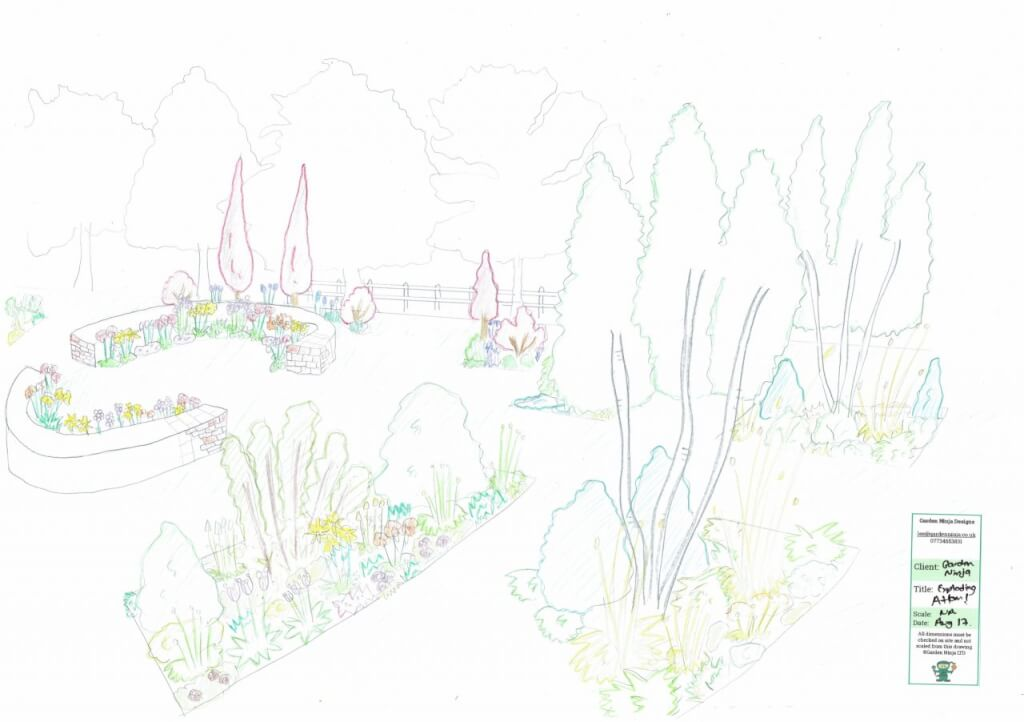 A hand drawn garden design render by Lee Burkhill the Garden Ninja