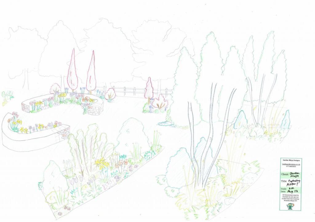 A hand drawn garden design render by Lee Burkhill the Garden Ninja