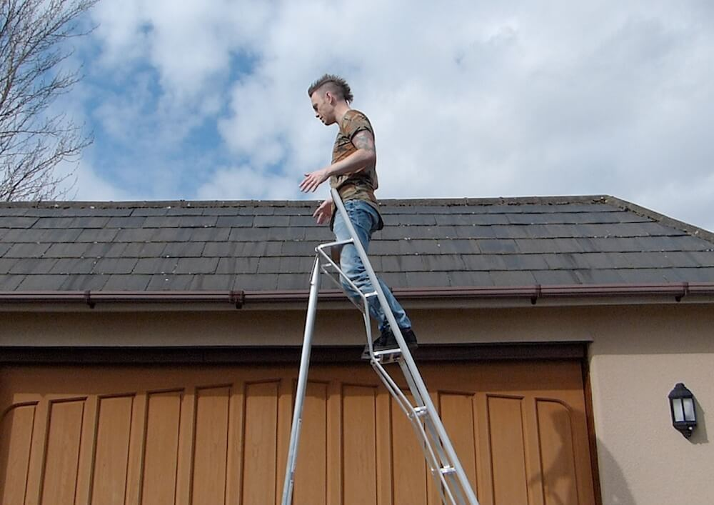 Garden blogger Lee Burkhill up a henchman ladder
