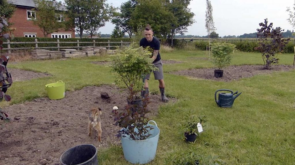 Planting up shrubs in a garden