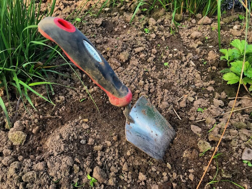 Garden trowel in the ground