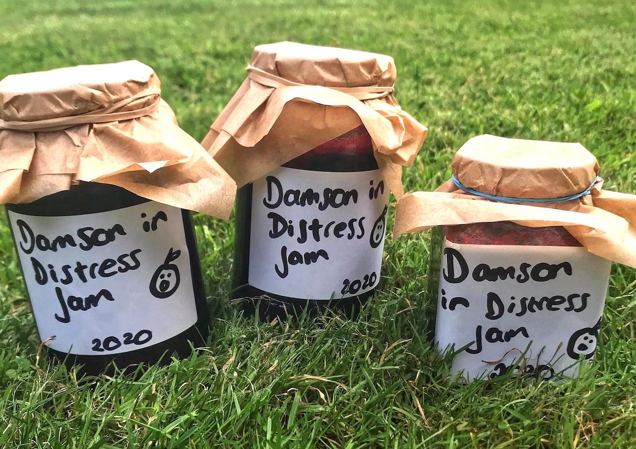 Home made damson gin garden ninja