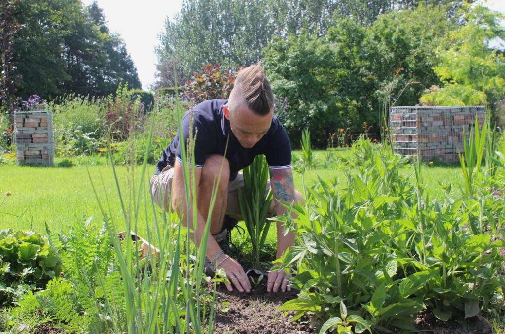 Garden Ninja plants up the exploding atom garden