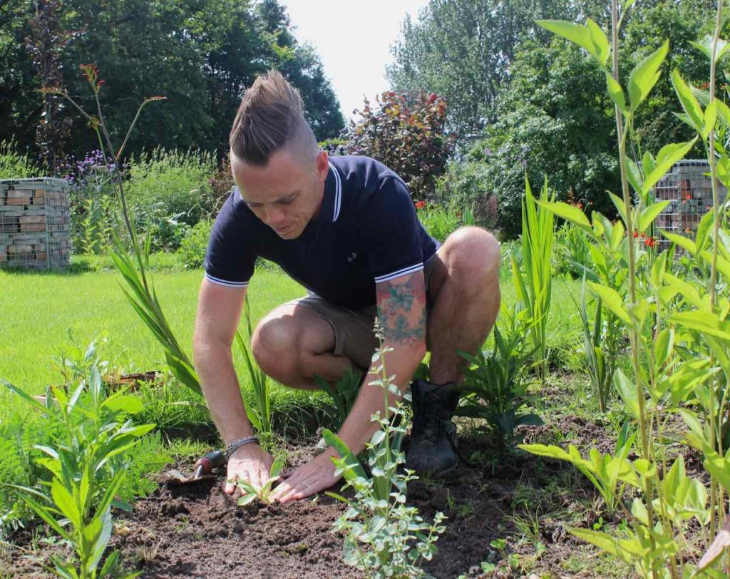 Garden ninja Lee Burkhill planting a border with seedlings