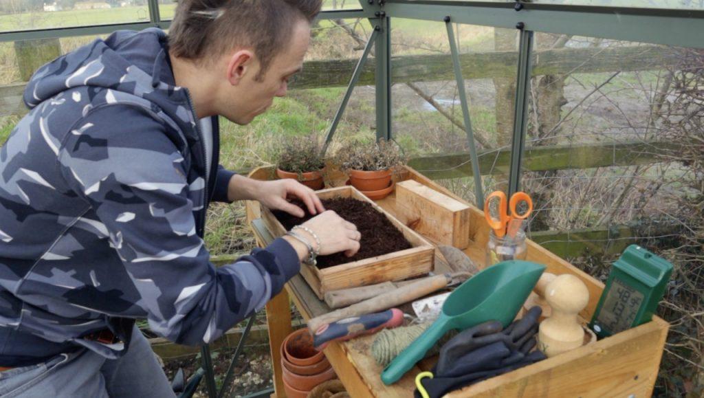 Garden Ninja stratifying seeds