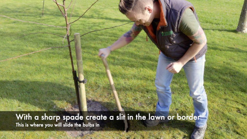 Lee Burkhill planting a bulb