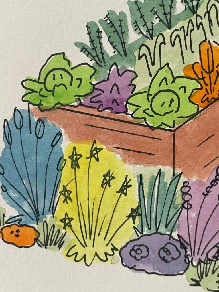 Coloured vegetables in a drawing by Lee Burkhill